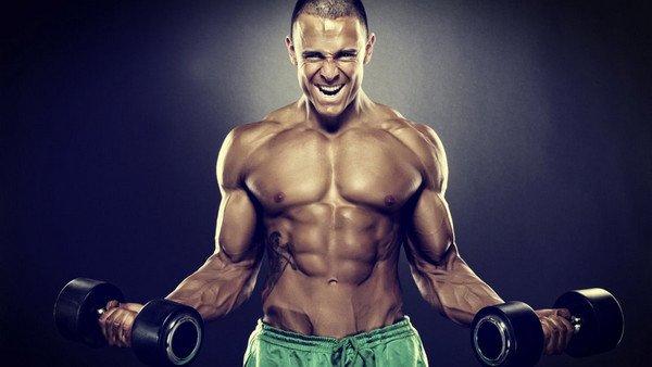 Télécharger gratuitement Entraînement & Fitness Gym musique